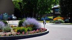 Sensational Summerland Gardens